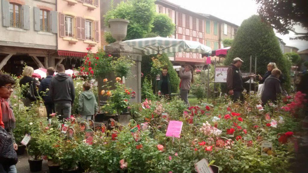 Mirepoix Marché aux fleurs en Ariège Pyrénées