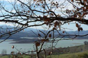 Randonnée: Balade autour du Lac de Montbel